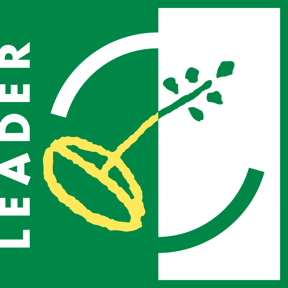 Logo_LEADER_4c